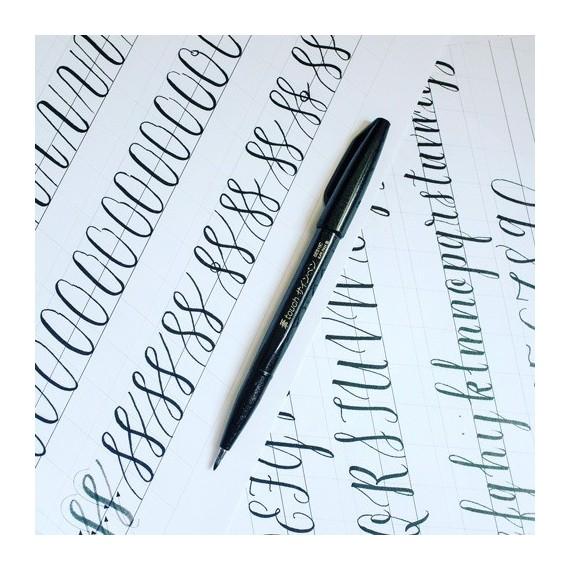 Feutre PENTEL Sign pen touch - Pointe souple fine (0 rechargeable) - Noir A