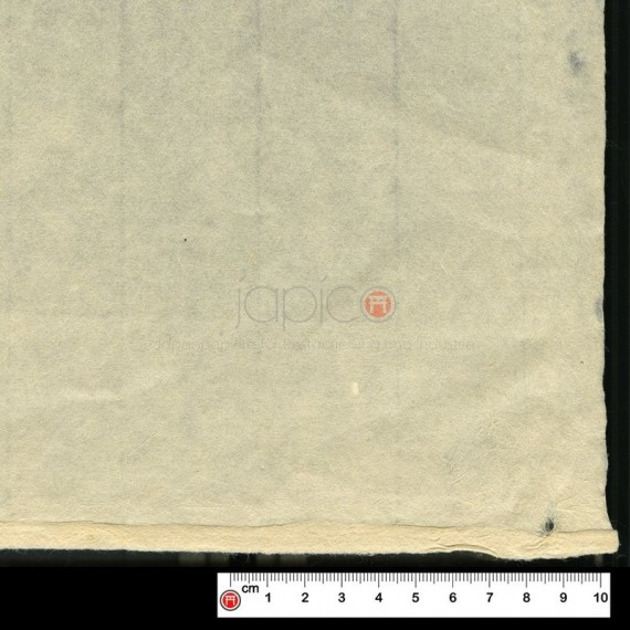Papier du monde CDQV - Arakaji - 33g - F:61 x 98 cm - Nature