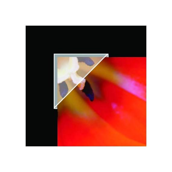 ANGLES POLYPROPYLENE DE MONTAGE POUR ARCHIVAGE 1.58 CM - LINECO