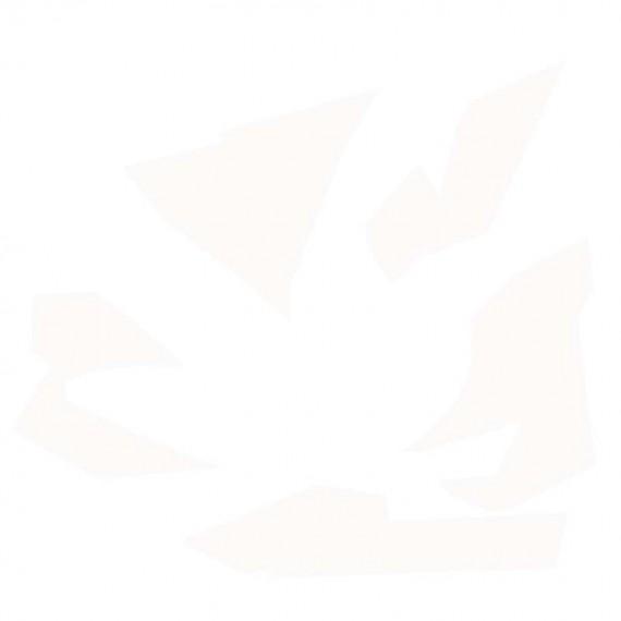 EMAIL FAIENCE BLANC BRILLANT PR125 - 1 KG (980-1000)