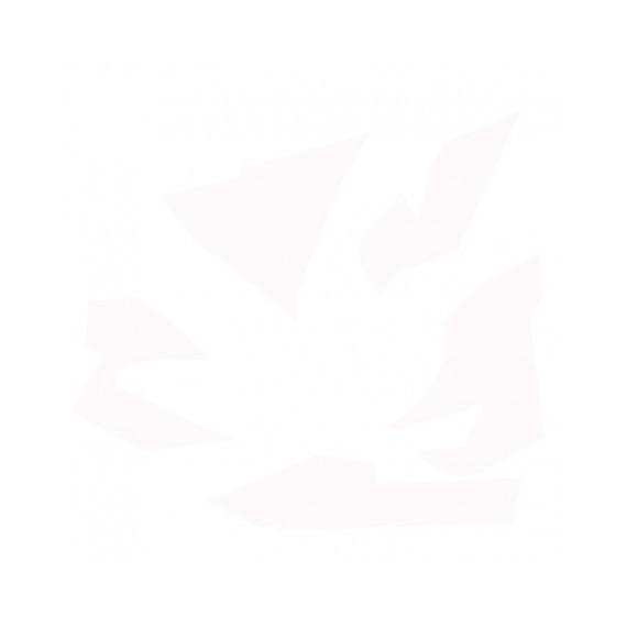 EMAIL GRES BLANC OPAQUE BRILLANT 0-10151 - 1 KG (1250-1300)