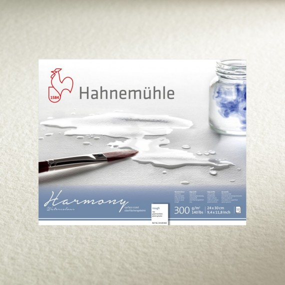 Album aquarelle HAHNEMUHLE Harmony - 300g - 12 feuilles - F:21 x 29.7 cm - (A4) G. Fin -  Spirales