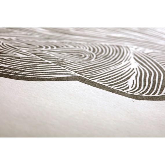 Papier grravure CLAIREFONTAINE Fleur de coton - 300gr - F:56 x 76 cm